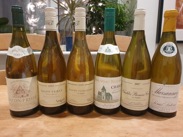 Fully mature mixed white Burgundy case X6