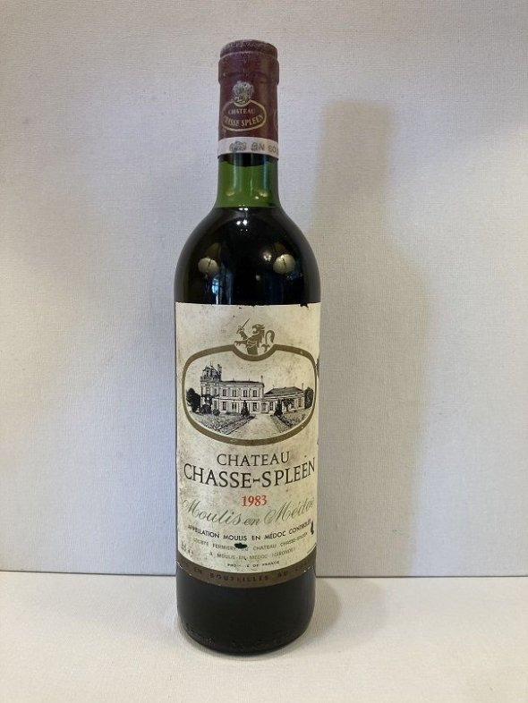 Chateau Chasse-Spleen, Moulis en Medoc